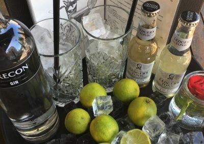 Brecon Gin & Tonic